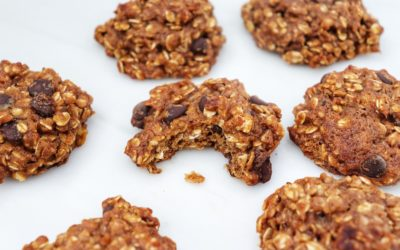 Vegan Snack Ideas: Chocolate Chip Oatmeal Banana Bread Cookies